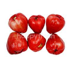Rose Apples (Jambu Air Madu)