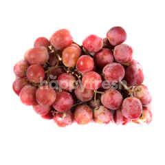 Australian Seedless Red Grapes