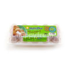 Nutriplus Fresh Eggs With Omega-3