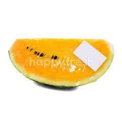 UM Yellow Watermelon