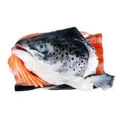 Aeon Nakajima Fish Head