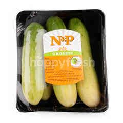 Natural & Premium Food Organic Cucumber
