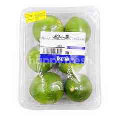 Large Lime