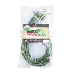Masada Organic Long Bean