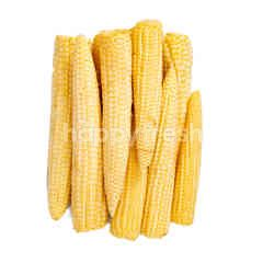 Masada Organic Pickle Corn