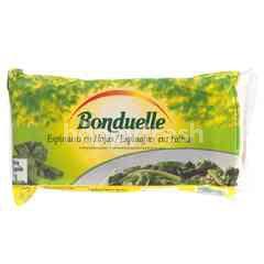 Bonduelle Frozen Leaf Spinach