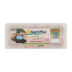 Nutriplus Fresh Eggs Low Cholestrol