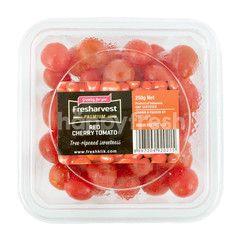 Fresharvest Premium Red Cherry Tomato