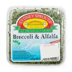Sydney Sprouts Living Broccoli & Alfalfa Sprouts