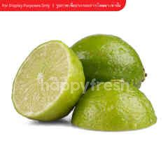 Tesco Seedless Lime