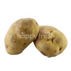 Regular Potato