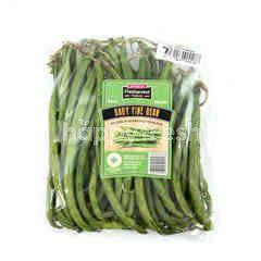 Fresharvest Premium Baby Fine Bean