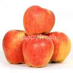 Royal Gala Organic Apple (8 Pieces)