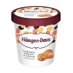 Haagen-Dazs Caramel Biscuit & Cream Ice Cream
