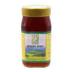 Radiant Whole Food Organic Honey