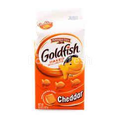 Pepperidge Farm Goldfish Baked Cheddar Crackers