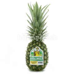 Rompine Pineapple