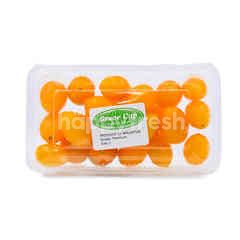 GRACE CUP Yellow Crunchy Tomato