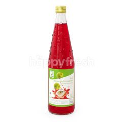 Choice L Save Cocopandan Syrup