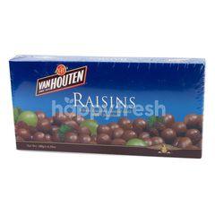 Van Houten Raisins Raisins Coated With Milk Chocolate