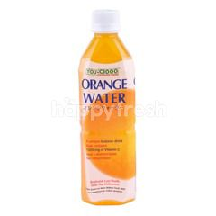 You C1000 Orange Flavored Isotonic Drink