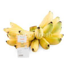Tesco Golden Banana