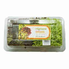 Highland Salanova Coral Mix Lettuce