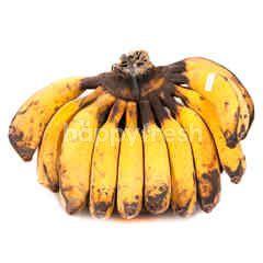 King Bulu Banana