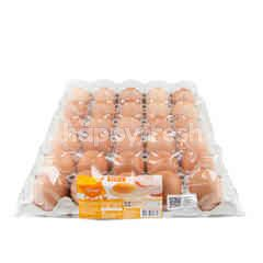 Tesco Fresh Eggs Size L (30 Pcs)