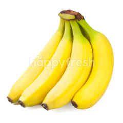 Sunpride Mini Banana Pack