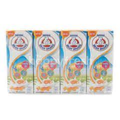 Bear Brand Honey Flavoured Milk
