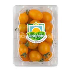 Fah Pra Than Phak Plod Phai Yellow Sweet Tomatoes
