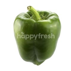 GRACE CUP Green Capsicum
