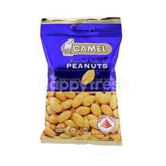 Camel Roasted Salted Peanuts