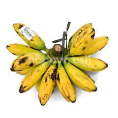 Golden Banana