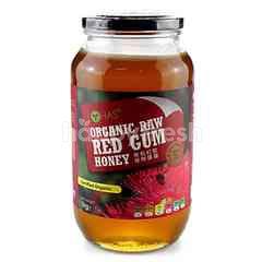 Lohas Organic Raw Red Gum Honey