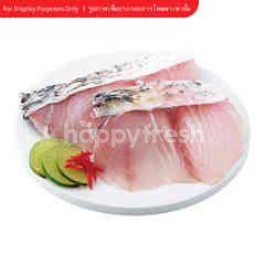 Sirikhun Red Snapper Fish Fillet