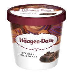 Haagen-Dazs Belgian Chocolate Ice Cream