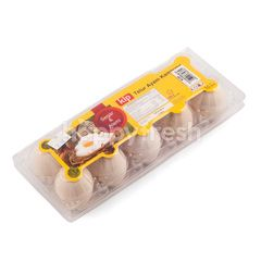 Kip Local Egg Chicken (10 pieces)