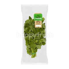 EAT FRESH Young Green Spinach (Bayam Hijau)