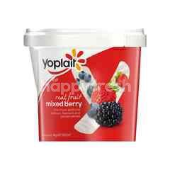 Yoplait Mixed Berries Yogurt