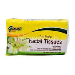 Giant Facial Tissues (400 Pieces)
