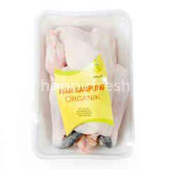 Organic Kampong Chicken