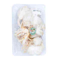 White Oyster Mushroom