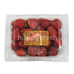 Strawberry 2 Packs