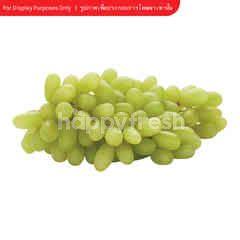 A-Best Green Seedless Grapes