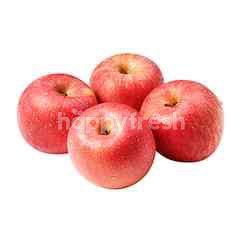 Korea Fuji Apple (6s)