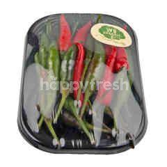 Wb Organic Jinda Pepper