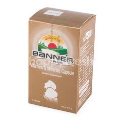แบนเนอร์ วิตามินและแร่ธาตุชนิดแคปซูล