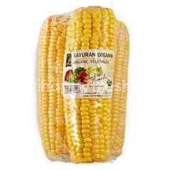 Choice L Prime Organic Peeled Sweet Corn